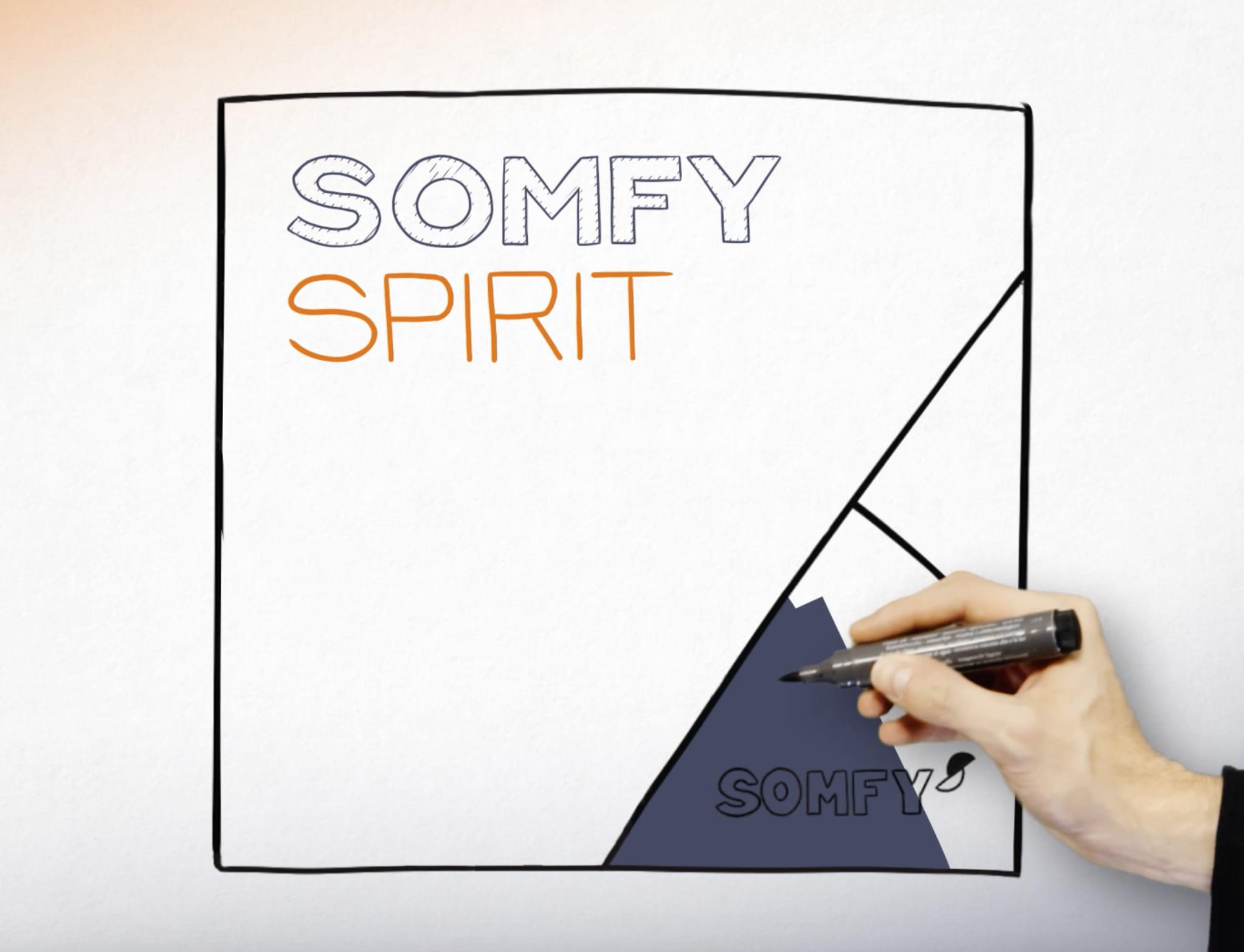 Partager le « SOMFY SPIRIT » auprès des managers monde pour l'incarner au quotidien